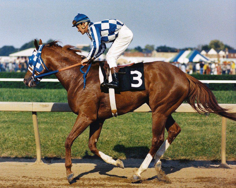 secretariat the horse ridden by one of the horsemen