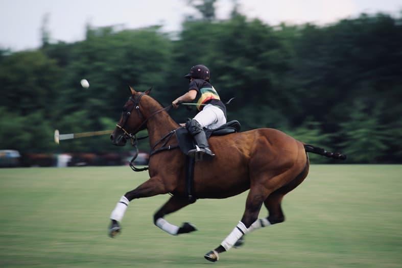 a man riding a brown horse on a grass court